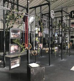 Club Dinamica Padova